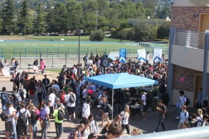 Club fair draws crowd