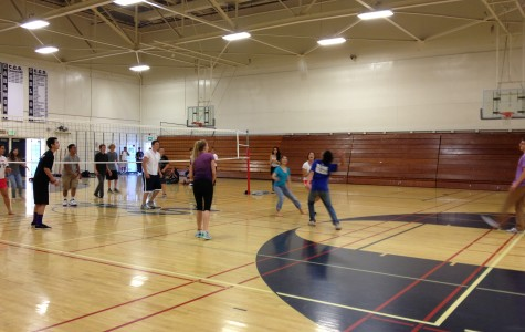 Lunchtime volleyball tournament: now serving