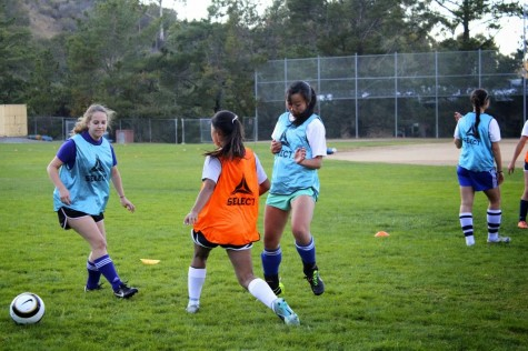 Soccer season ignites competition