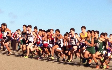 Cross country settles for second at CCS championship