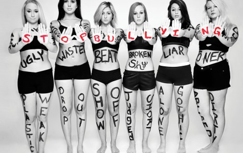 Stop the hate: bullying must go
