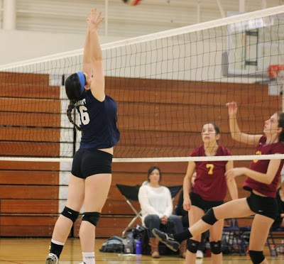 Carlmont volleyball — can you dig it?