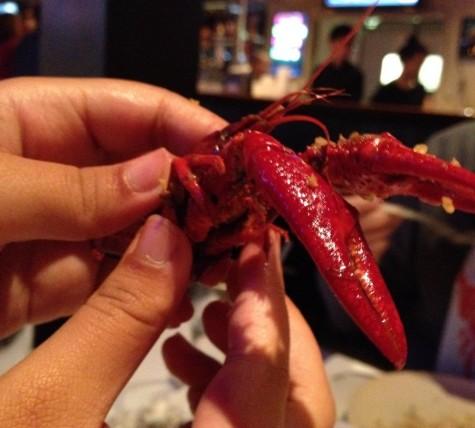 Red Crawfish — good food, but avoid the crawfish