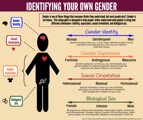 Identifying your own Gender