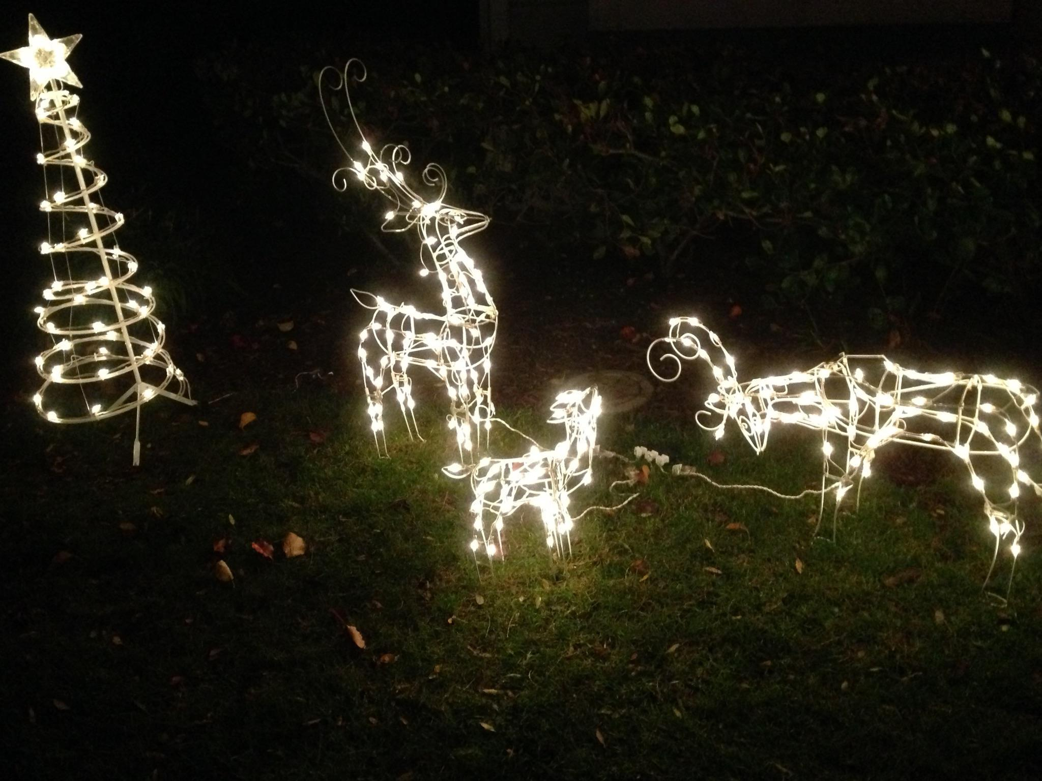 Christmas lawn decorations are a common way to show