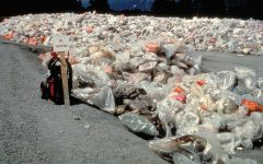 California law banning plastic bags meets opposition