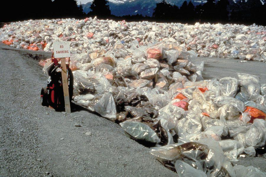 Humans+use+an+excessive+amount+of+plastic+bags+--+around+1+trillion+--+each+year.+Unfortunately%2C+many+of+them+end+up+in+the+oceans%2C+polluting+the+water+and+destroying+ecosystems.+