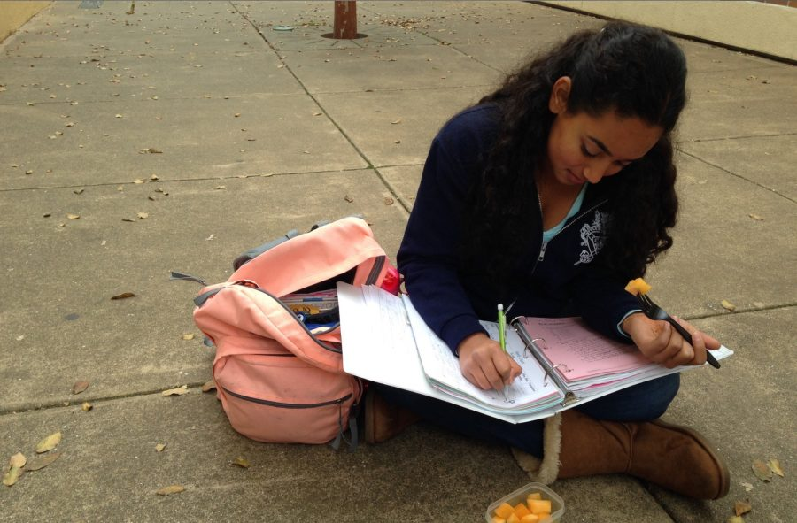 Sophomore+Kinjal+Vyas+eats+a+healthy+a+snack+as+she+does+her+homework.++