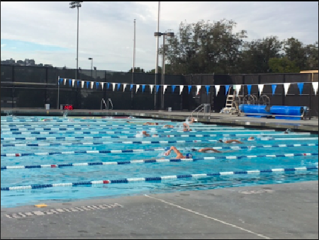 Carlmont varsity swim team rides the wave into a new season