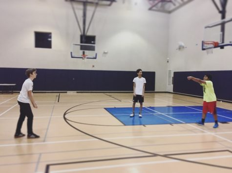 A test of testosterone: why boys don't play volleyball