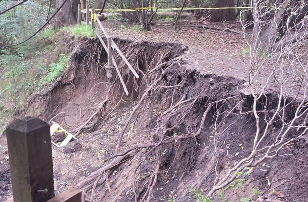 After+the+heavy+rains+in+February%2C+the+wooden+fences+at+Twin+Pines+Park+have+collapsed+due+to+the+unstable+footing+underneath.