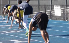 Carlmont track and field defeats Terra Nova