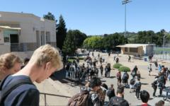 A senior's reflection on high school