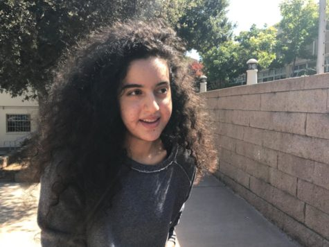 Tara Najafi