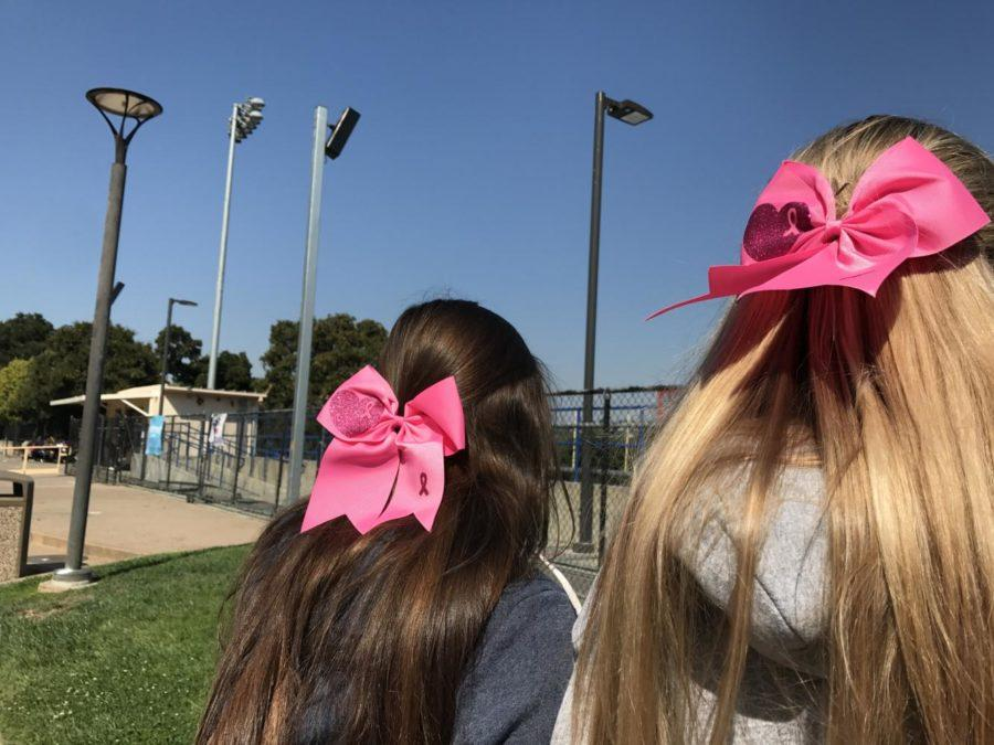 Cheerleaders+Rachel+McDonald%2C+a+senior%2C+and+Nicole+Eftimiou%2C+a+senior%2C+wear+pink+ribbons+on+Friday+in+support+for+Breast+Cancer+Awareness+Week.