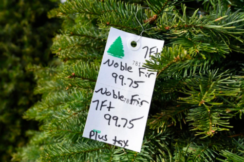 Bay Area Christmas tree prices soar as Christmas tree shortage arises