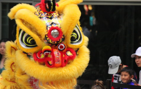 New year event celebrates Chinese culture
