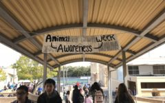 Animal awareness week sheds light on meaningful topics