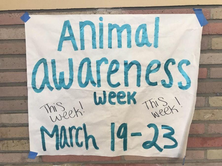 A+poster+hung+in+C+hall+announcing+the+dates+of+Animal+Awareness+Week.+