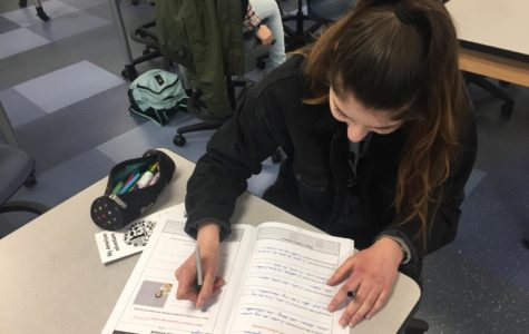 French exchange students adapt to Carlmont culture