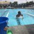 Memorial Scholarship Swim a Thon honors Clara Tao