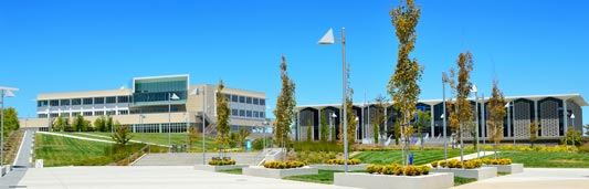 The College of San Mateo, a two year university.