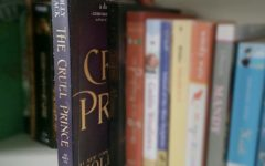 'The Cruel Prince' puts a dark spin on the fairy tale genre