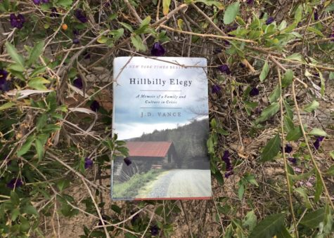 'Hillbilly Elegy' depicts new perspective on the white working class