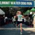 Belmont Water Dog Run makes a 'pawsitive' impact on local education foundations