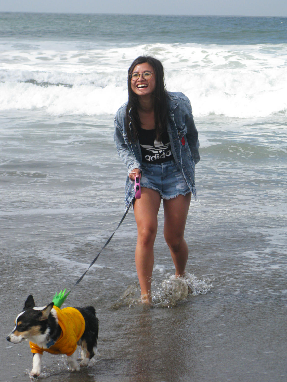 A+woman+laughs+as+her+corgi+sprints+away+following+a+cold+ocean+splash.