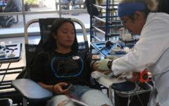 Blood drive draws student interest
