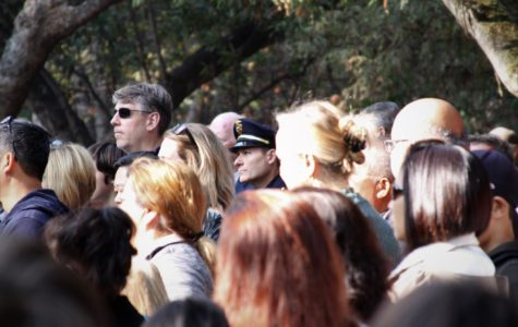Belmont honors veterans at Twin Pines Park