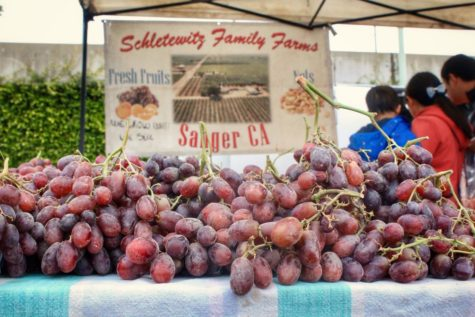 Belmont's farmers' market vendors build close community