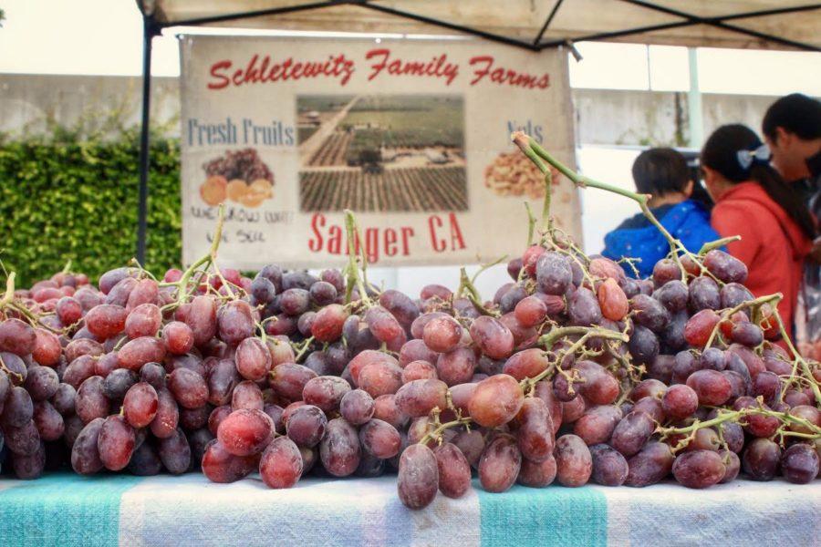 Belmont's farmers' market vendors build close community