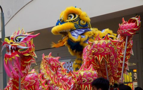 Lunar New Year Extravaganza welcomes the Year of the Pig