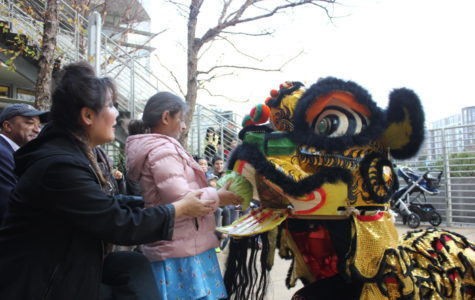 San Francisco performers strive to preserve Chinese New Year traditions