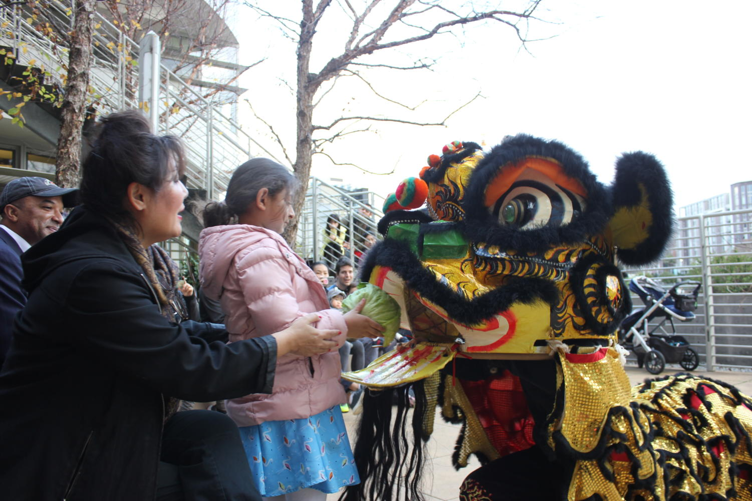 An audience member feeds cabbage to the lion to represent new luck in the new year.