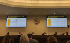 San Carlos City Council strives to make better gun regulations