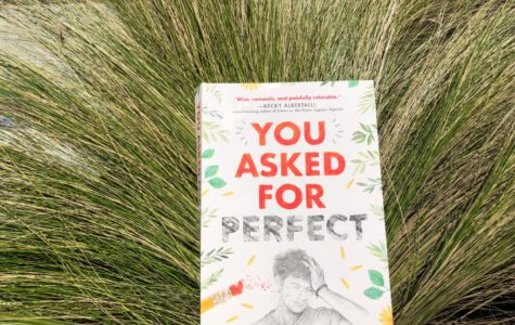 'You Asked for Perfect' is a close parallel to students' reality