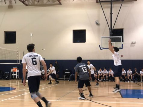 Boys varsity volleyball tames the Menlo-Atherton Bears