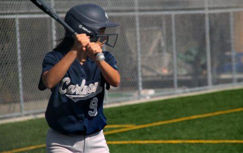 JV softball ends the season with a bang