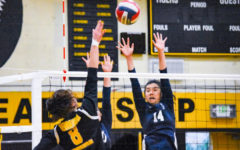 Carlmont emerges victorious against Terra Nova