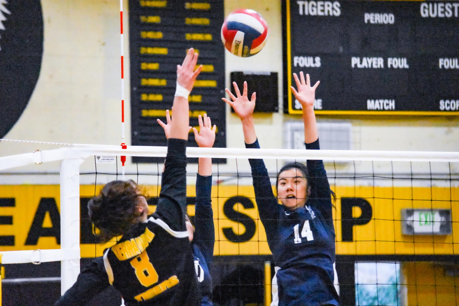 Isabella Chu, a junior, goes up for a block against the opposing Terra Nova hitter.