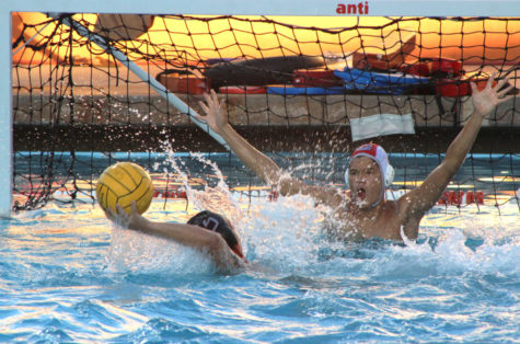 Varsity water polo community explains the prioritizing of student-athlete life