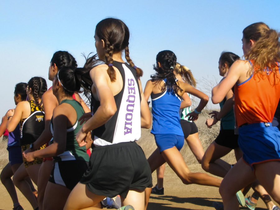 Runners compete for a chance at State Championships