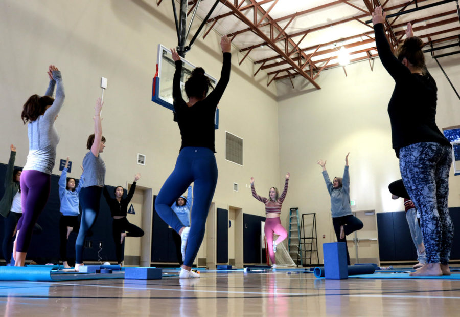 Yoga and Wellness Club aides mental and physical health