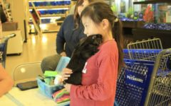 Rescue animals find new homes through National Pet Adoption Weekend