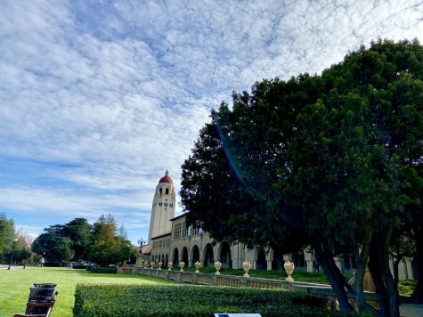 Belmont unveils memorial bench to celebrate veterans