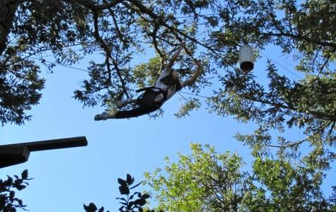 ASB takes leap of faith