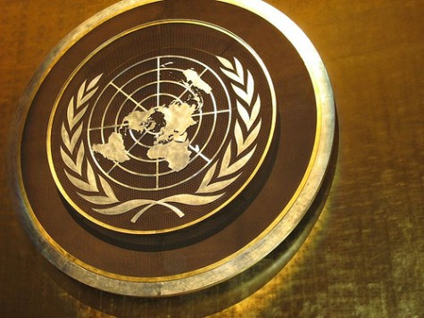 The miniature United Nations